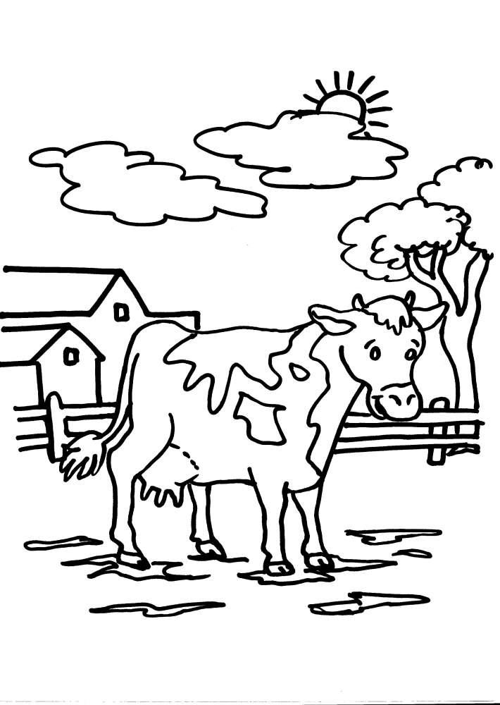 Disegno Da Colorare Mucca Disegni Da Colorare Per Bambini Animali