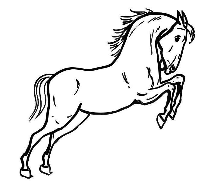 disegno cavallo da colorare disegno pony da colorare