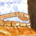 fattoria didattica..disegno dei ragazzi del laboratorio di pittura per artisti diversamente abili di parabiago,visita alla fattoria didattica e all'agriturismo
