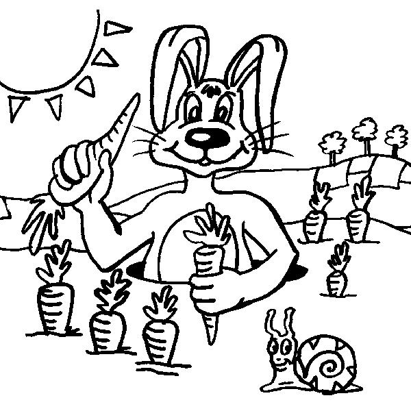 Disegno coniglio da colorare disegno coniglietto da for Lepre immagini da stampare