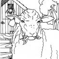 disegno pecora da colorare..disegno pecorella da colorare..agnello da colorare..agnellino con mamma pecora da colorare..ariete da colorare