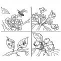 disegno fiore da colorare..disegno fiorellini da colorare..disegno fiori con coccinelle da colorare..disegno fiore con api da colorare