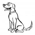 disegno cagnolino da colorare...disegno cane da colorare..disegno testa di cane da colorare...disegno cagnolino da colorare...disegno cagnetto da colorare...disegno cagnone da colorare..