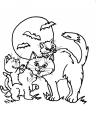disegno gattino da colorare per bambini..disegno gatto da colorare...micetti da colorare..micia da colorare..