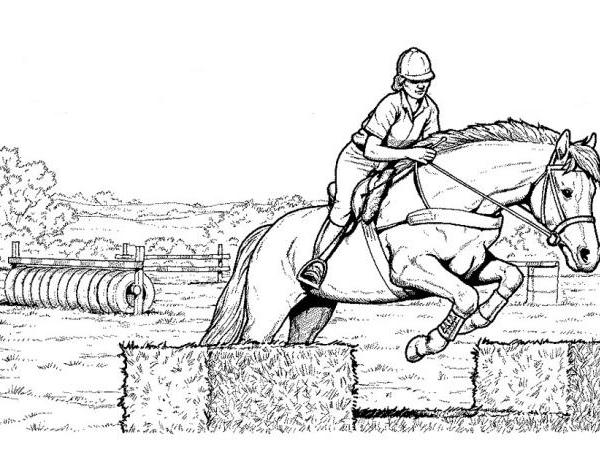 Disegno cavallo da colorare disegno cavallo salta for Immagini di cavalli da disegnare