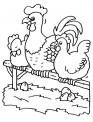 disegno galline e galli da colorare..disegno gallina con pulcini da colorare..disegno pollaio con galline e uova di gallina da colorare