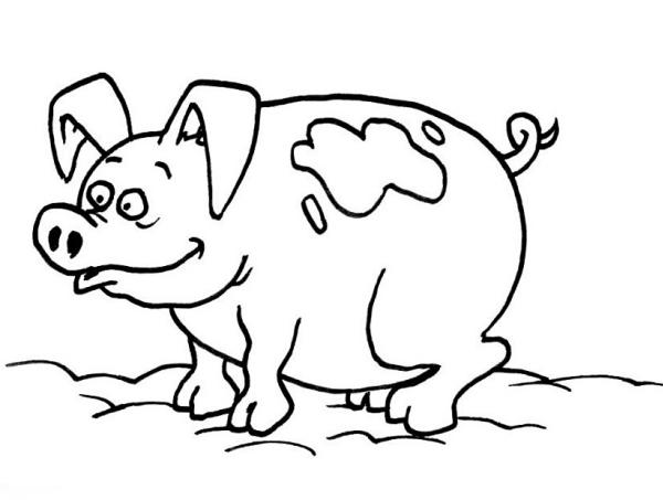 Disegno maiale da colorare disegno porcellino da colorare for Maialino disegno per bambini
