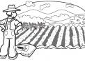 disegno contadino in fattoria didattica da colorare..disegno agricoltore in campagna da colorare..campo coltivato da colorare..orto in fattoria da colorare