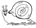 disegno lumaca da colorare gratis per bambini..disegno animale lumaca da colorare..disegno lumaca in fattoria didattica da colorare