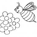disegno ape da colorare..disegno alveare con ape regina da colorare..ape operaia su fiore da colorare..disegno arnia con api da colorare