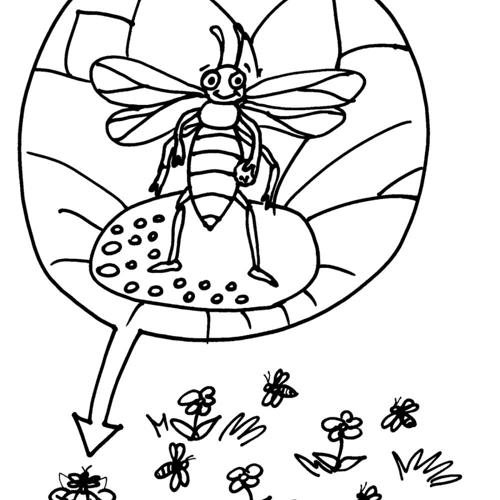 Disegno ape da colorare disegno vespa da colorare for Disegno pagliaccio da colorare