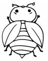 disegno coccinella da colorare..coccinella da colorare in fattoria..disegno insetto da colorare..larva di coccinella da colorare