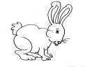 disegno coniglio in fattoria didattica da colorare per bambini..disegno coniglietto da colorare..disegno prato con conigli da colorare