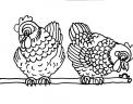 disegno galline nel pollaio da colorare..disegno galline della fattoria didattica da colorare