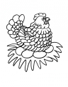 disegno gallina e pulcini da colorare..disegno gallinella da colorare..disegno pulcino nel pollaio della fattoria da colorare