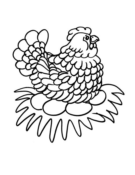 Disegno gallina e pulcini da colorare disegno gallinella for Disegno della fattoria americana