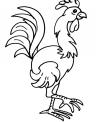 disegno gallo nel pollaio da colorare..disegno pulcino con gallo da colorare..disegno tortora da colorare
