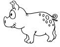 disegno porcellino della fattoria da colorare..disegno suinetto da colorare..disegno maialina da colorare
