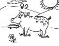 disegno animali della fattoria da colorare..disegno animali fattoria maiale da colorare