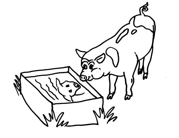 Disegno maiale per salami da colorare disegno porcello da for Maialino disegno per bambini