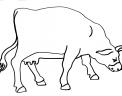 disegno mucca pezzata rossa da colorare..disegno stalla di mucche da colorare