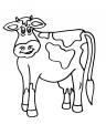 disegno mucca razza chianina da colorare..disegno annutolo in fattoria da colorare..disegno vacca razza romagnola da colorare