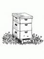 disegno alveare da colorare..disegno casetta delle api da colorare..disegno insetto ape da colorare..vespa che vola da colorare