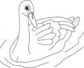 disegno di un cigno nello stagno in fattoria da colorare..disegno cigno con piccoli pulcini da colorare