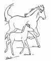 disegno cavallo con puledro da colorare..disegno cavalli che corrono da colorare..disegno cavallino da colorare