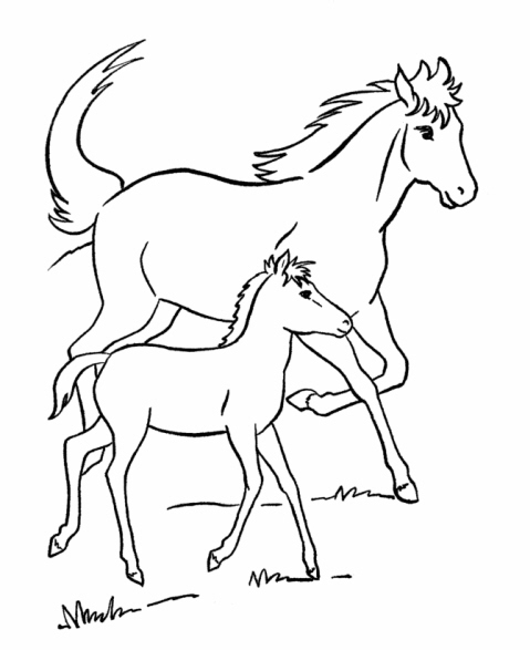 Disegno cavallo con puledro da colorare disegno cavalli for Immagini di cavalli da disegnare