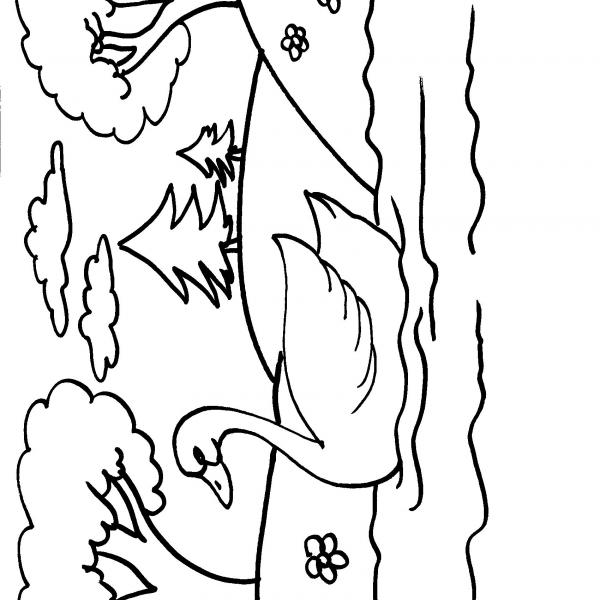 Disegno cigno sul lago da colorare disegno cigno in for Disegni casa sul lago