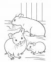 disegno topini da colorare..disegno famiglia di topi da colorare..disegno topi nel granaio da colorare