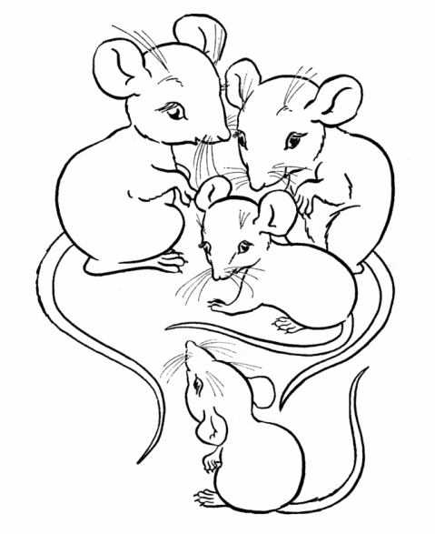 house mouse designs coloring pages - photo#30