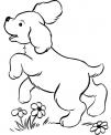 disegno cagnolino da colorare..disegno cagnetto da colorare..disegno cagnone da colorare