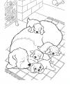 disegno cagnetta con cagnolini da colorare..disegno cagnolini che dormono e giocano da colorare per bambini