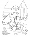 disegno cani nella cuccia da colorare..disegno cagnolini che giocano con osso da colorare in fattoria