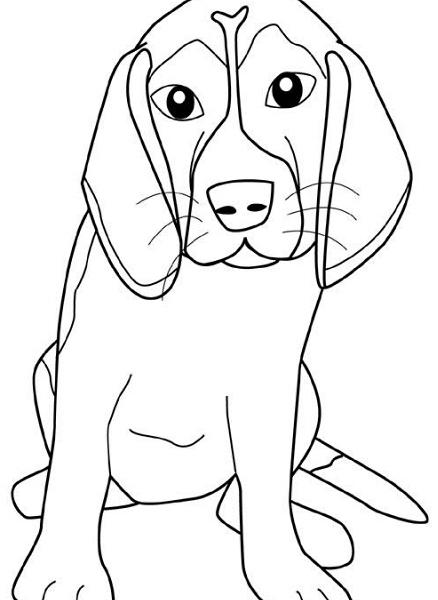 Disegno cane da colorare disegno cagnolino da colorare for Disegni da stampare e colorare di cani