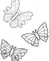 disegno farfallina da colorare mentre vola sulla fattoria..disegno farfalla colorata da colorare per bambini