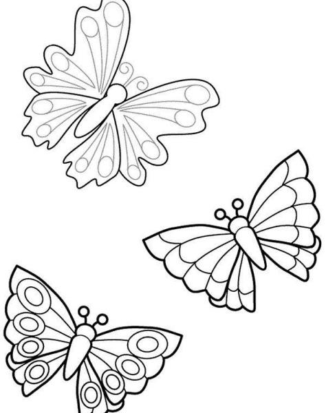 Disegno farfallina da colorare mentre vola sulla fattoria - Pagine da colorare per le farfalle ...