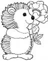 disegno riccio nel bosco da coloraredisegno istr