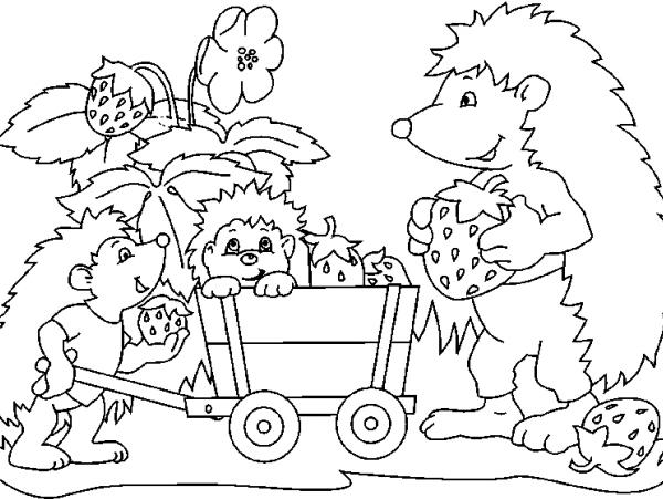 Disegno piccoli ricci con mamma riccio da colorare for Riccio da colorare