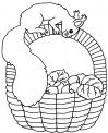 disegno scoiattolo americano da colorare..disegno cip e ciop scoiattoli da colorare