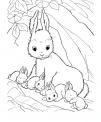 disegno di conigli che mangiano carote da colorare..disegno coniglietti che saltano e giocano da colorare..coniglia orecchie lunghe da colorare