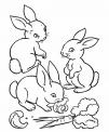 disegno di coniglio selvatico da colorare..disegno coniglio nella tana da colorare..lepre che corre nel prato in fattoria da colorare