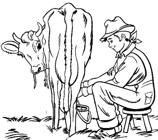 Disegno mucca da colorare disegno vitello da colorare for Immagini cavalli stilizzati