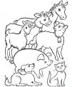 disegno tutti gli animali della fattoria da colora