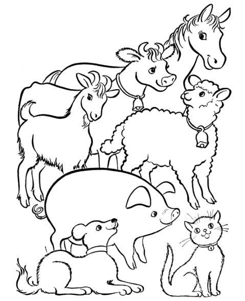 fattoria degli animali da colorare animali in fat