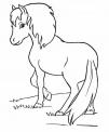 disegno cavallina da colorare..disegno piccolo cavallo da colorare..pony con lunga criniera da colorare