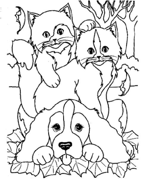 Cane E Gatto Da Colorare Cagnolino Con Gattino Da Colorare Per
