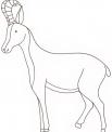 disegno camoscio da colorare..disegno stambecco da colorare..disegnomuflone da colorare..cervo maschio da colorare..daino da colorare..capriolo da colorare